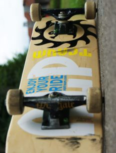 Skateboard Deck Nature