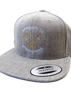 Snapback Cap Needles Grey Gold