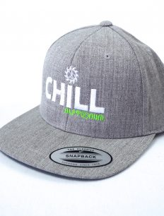 Snapback Cap Chill Grey
