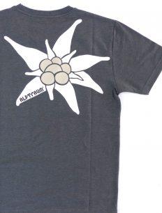 Men EDELWEIß T-Shirt steingraumillee
