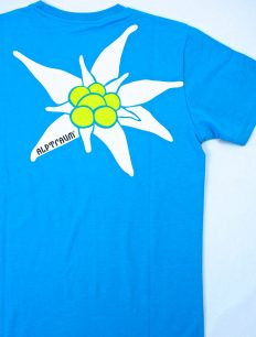 Men T-Shirt EDELWEIß turquoise